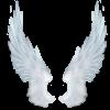 Здарова - последнее сообщение от Phenomenon